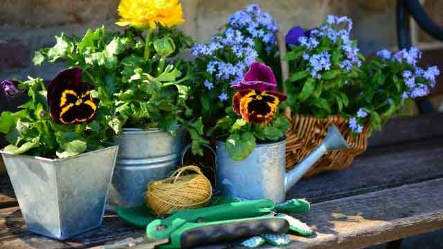 Simple Health Tips for Everyone Happy Living - Gardening Reduces Stress and Symptoms of Depression